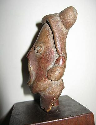 Pottery Artifact Pre-Columbian Bust elongated skull warrior Mayan Nayarit Indian