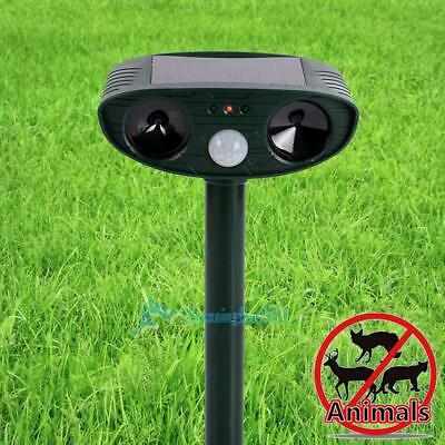 Solar chasseur d'animaux ultrasons chat fox chien dissuasif répulsif anti Garden
