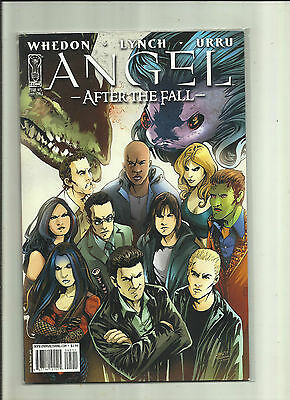 Angel - After the Fall  #5