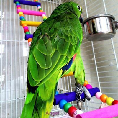 Pet Bird Parrot Wood Ladder Climb Macaw Cage Swing Shelf Parrot Bites Play Games