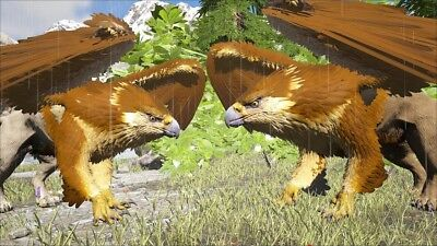 Griffin - Ark Survival Evolved - PS4 PvP New Servers