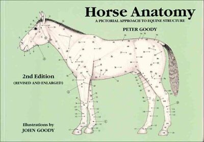Horse Anatomy A Pictorial Approach to Equine Structure 9780851317694