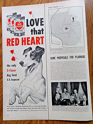 1952 Red Heart Dog Food  Ad Terrier Dog ?
