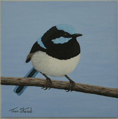 "Small Painting 8 X 8 Acrylic - Original Art - ""Superb Blue/Fairy-Wren"""