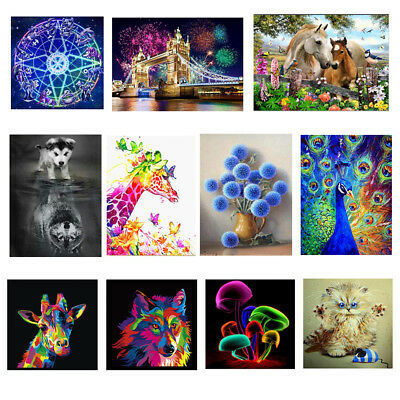 5D DIY Diamond Painting Embroidery Cross Crafts Stitch Kit Home Wall Decoration