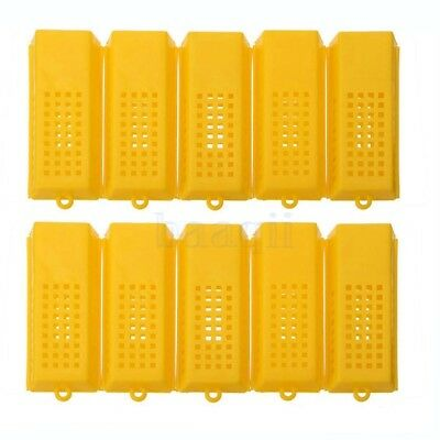 10X apiculteur Queen Bee Cage Traveling Moving Catcher Outil apiculture chaud BA