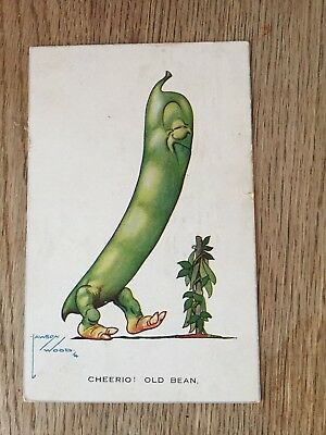 Postcard Fruit comic Cheerie old Bean by Lawson Wood