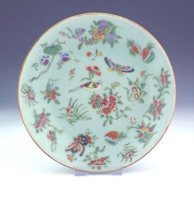 Antique Chinese Oriental - Bird Insect & Flowers Celadon Glazed Plate - Nice!