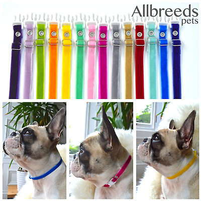 Allbreeds Puppy Velvet I.D Whelping Collars, Adjustable Bands, Dog Breeding Set