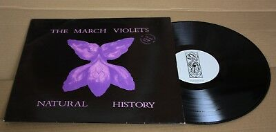 The March Violets  ''natural History'' Rebirth Records  1984 Nm/vg++