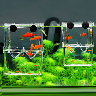 Fish Aquarium Tank Breeding Hatchery Young Fish Shrimp Incubator Isolation Box