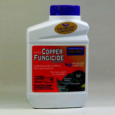 Bonide Copper Fungicide 16 Oz Bottle, Organic Fungicide