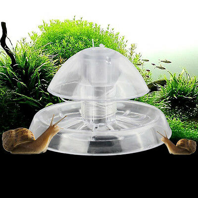 Aquarium Clear Snail Trap Fish Tank Plants Planarian Leech Catch Environment New
