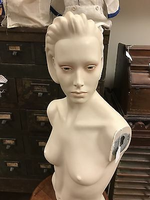 Mannequin female bust.