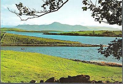Clew Bay, Co. Mayo - Croagh Patrick - NPO postcard c.1960s