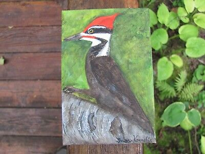 Pileated Wood Pecker painted on 4 x 6 inch canvas board
