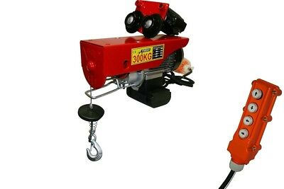 Electric Mobile Trolley Hoist Winch 220V 150 / 300 Kg, 600W With Hook And Pulley
