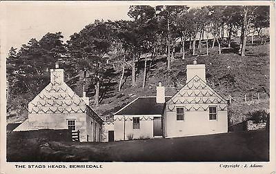 The Stag Heads, BERRIEDALE, Caithness RP
