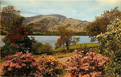 Picture Postcard- Coniston From Brantwood