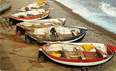 Picture Postcard-:CRAB BOATS