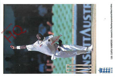 Picture Postcard-:Cricket, Curtly Ambrose