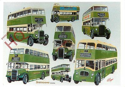 Picture Postcard:-SOUTHDOWN BUSES