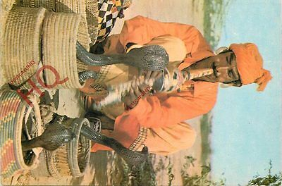 Picture Postcard~ Pakistan, A Typical Snake Charmer
