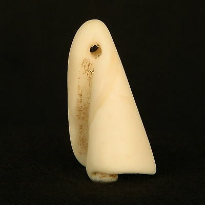 ANCIENT Shell Bead PENDANT - Made from CYMBIUM - 32 mm LONG - Saharian NEOLITHIC