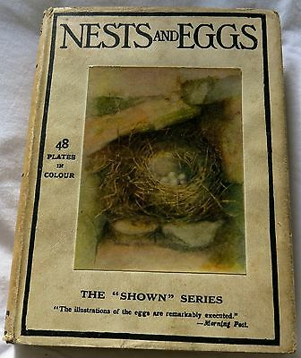 """Lovely Antique Book: """"Nests and Eggs"""" """"The Shown Series"""". 48 colour plates. D/W"""