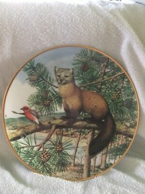 Franklin Porcelain Woodland Year American Marten in the November Pines Plate