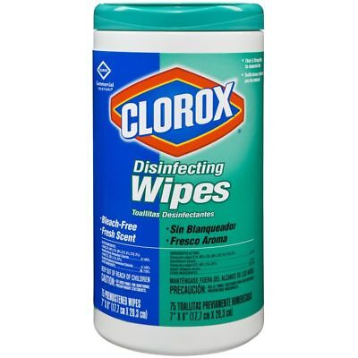 Clorox Disinfecting Wipes, 75 Wipes Per Tub, 6 Tubs Per Case