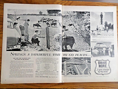 1956 Ethyl Oil Gas Ad Spring's A Wonderful Time to go Places Cattle Ranch Theme