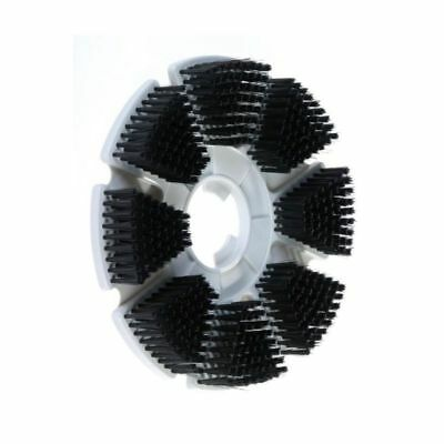 Motor Scrubber Light-Duty Brush Disc, 1 Each