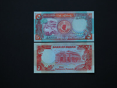 SOUTH SUDAN BANKNOTES   5 POUNDS  p45  -  HIGH QUALITY NOTES IN BEST  MINT UNC