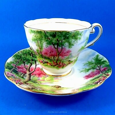 Scenic Royal Standard Spring's Gift Tea Cup and Saucer Set
