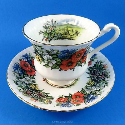 Royal Standard Rich Floral & Harvest Scenic Tea Cup and Saucer Set