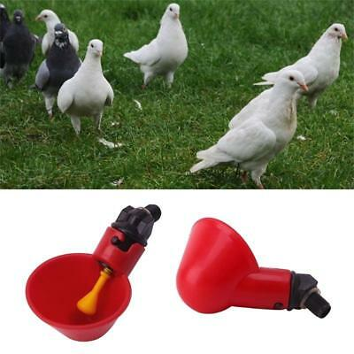 1/5/10 Pcs Hen Fowl Bowl Plastic Chicken Poultry Drinker Automatic Water Cups