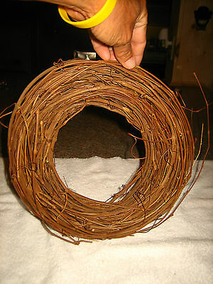Nwot Grapevine Wreath~Great Crafts Project~L@@k~