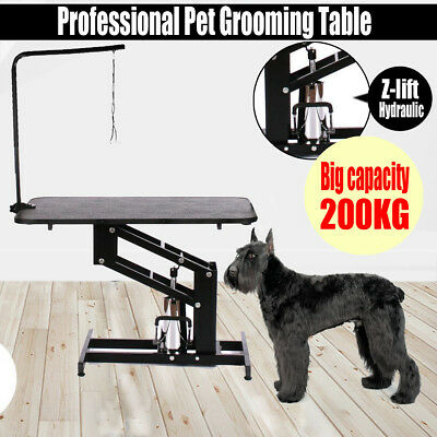 Z-Lift Professional Hydraulic Dog Grooming Parlour Table With Arm And Pet Leash
