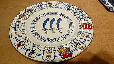 Middlesex County Cricket Champions 1982 Coalport Ltd Edition Plate.V G Condition