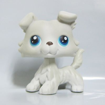Littlest Pet Shop Collection LPS #363 Grey White Collie Puppy Dog Figure Toys a3