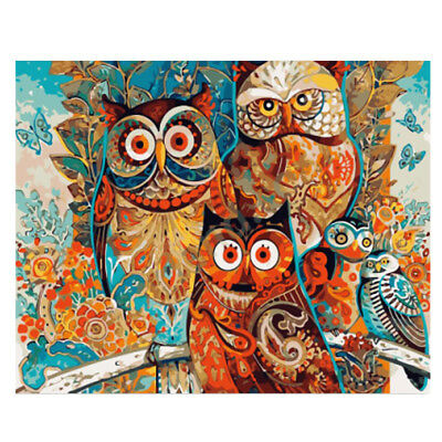 Modern Paint By Number Kit DIY Canvas Painting Wall Artwork Picture Owl