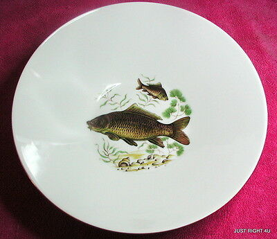 "Mitterteich (Various Fish - Brown Fish) 9"" SERVING BOWL   Exc"