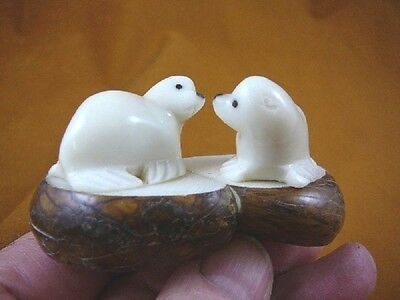 (TNE-SEAL-475-A) pair of white Seals TAGUA NUT palm figurine carving ice seal