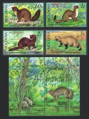 Moldova Marten Mink Wildcat Animals 4v+MS SG#551-MS555
