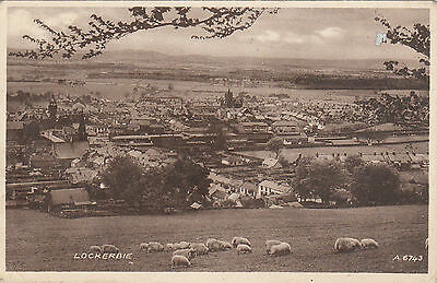 General View & Sheep, LOCKERBIE, Dumfriesshire
