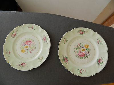 Vintage Johnson Bros 2 Plates PAREEK England