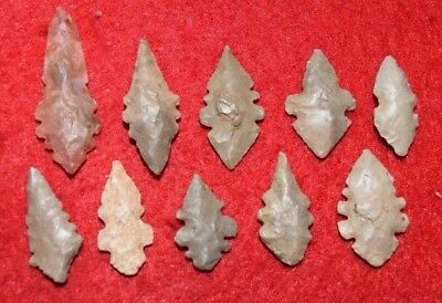 10 small eccentric Sahara Neolithic projectile points, serrations