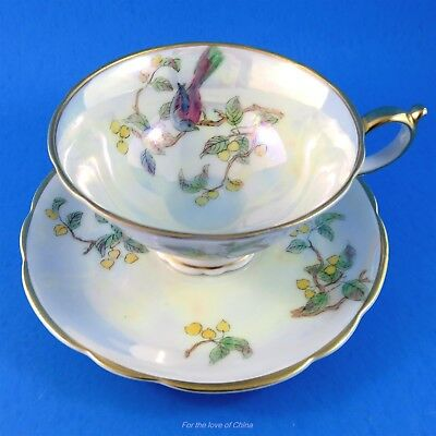 Pretty Bird on Branch Luster Royal Bayreuth Bavaria Germany Tea Cup and Saucer