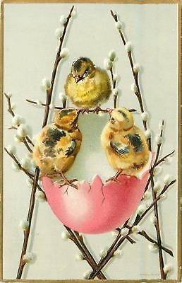Easter~Mottled Chicks Climb Pussy Willow Ladder to Pink Egg Shell~Emboss~Germany